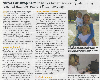 French Property News - August 2008 Article about our French lessons for Children