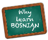 Bosnian. E-learning or Skype lessons.